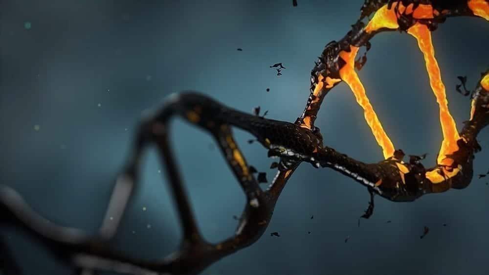 Epigenética estuda o impacto do meio ambiente nos genes dos filhos e ajuda a quebrar preconceito contra a ovodoação.